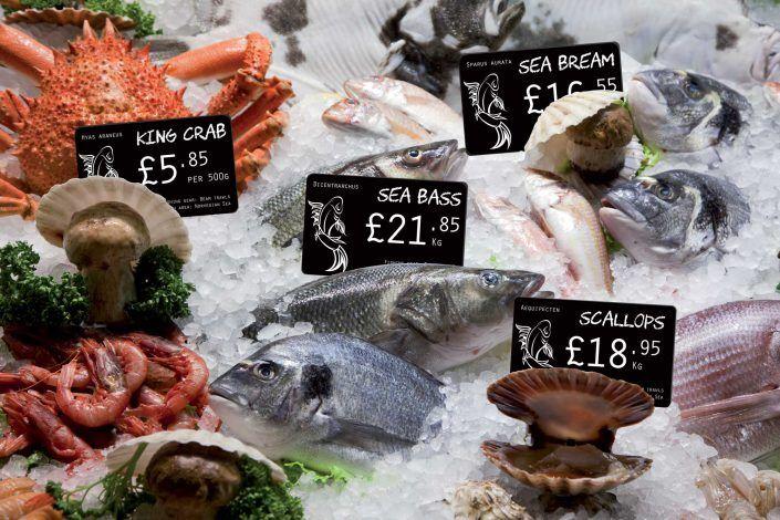 Price Tag Fish Display