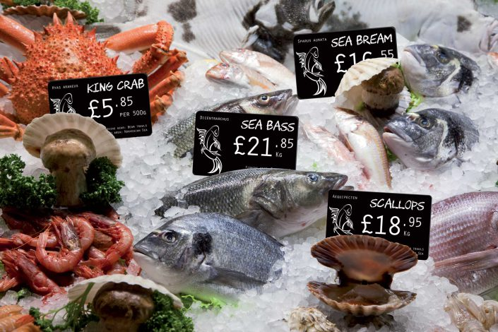 Price Tag Fish Display