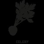 Pictogrammes-allergenes-reglementation-inco-celeri